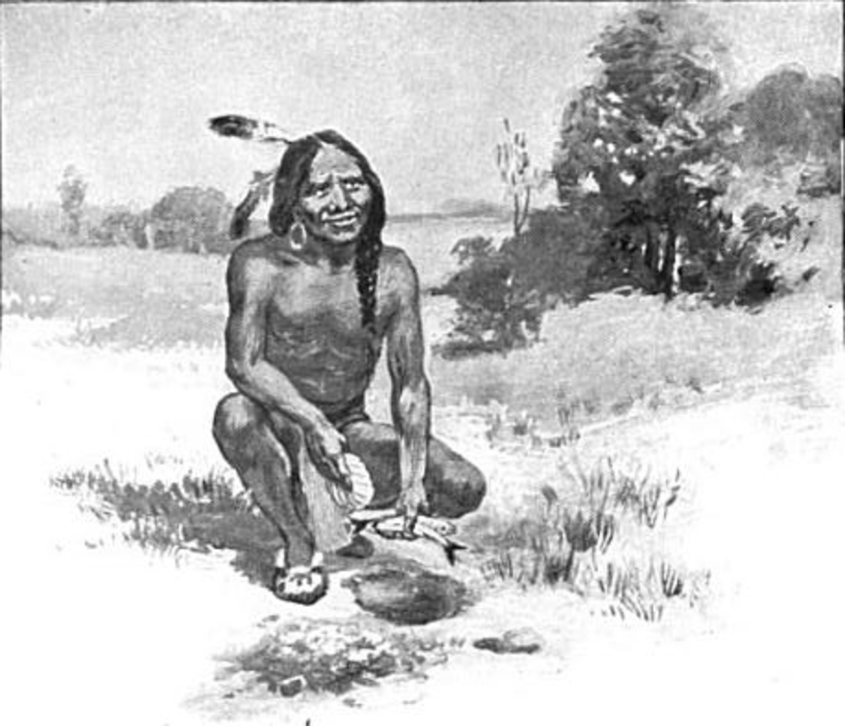 Squanto or Tisquantum teaching the Plymouth colonists to plant corn with fish.
