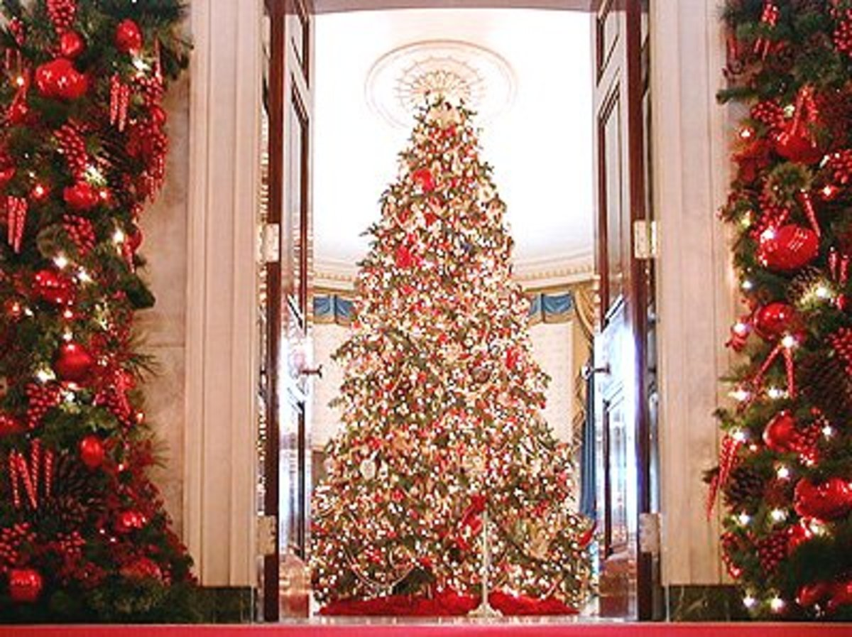 White House Christmas Tree in the Blue Room Note: Chandelier Was Removed to Make Room for the Large Tree