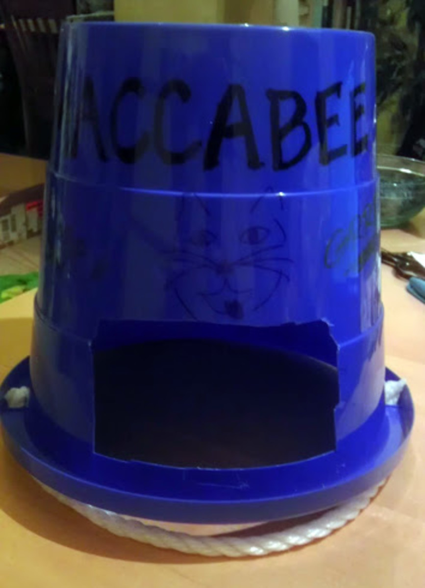 A completed Maccabee Helmet, complete with a fierce lion on the front.