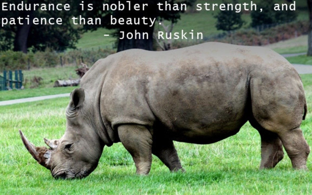quotes-about-strength-pictures