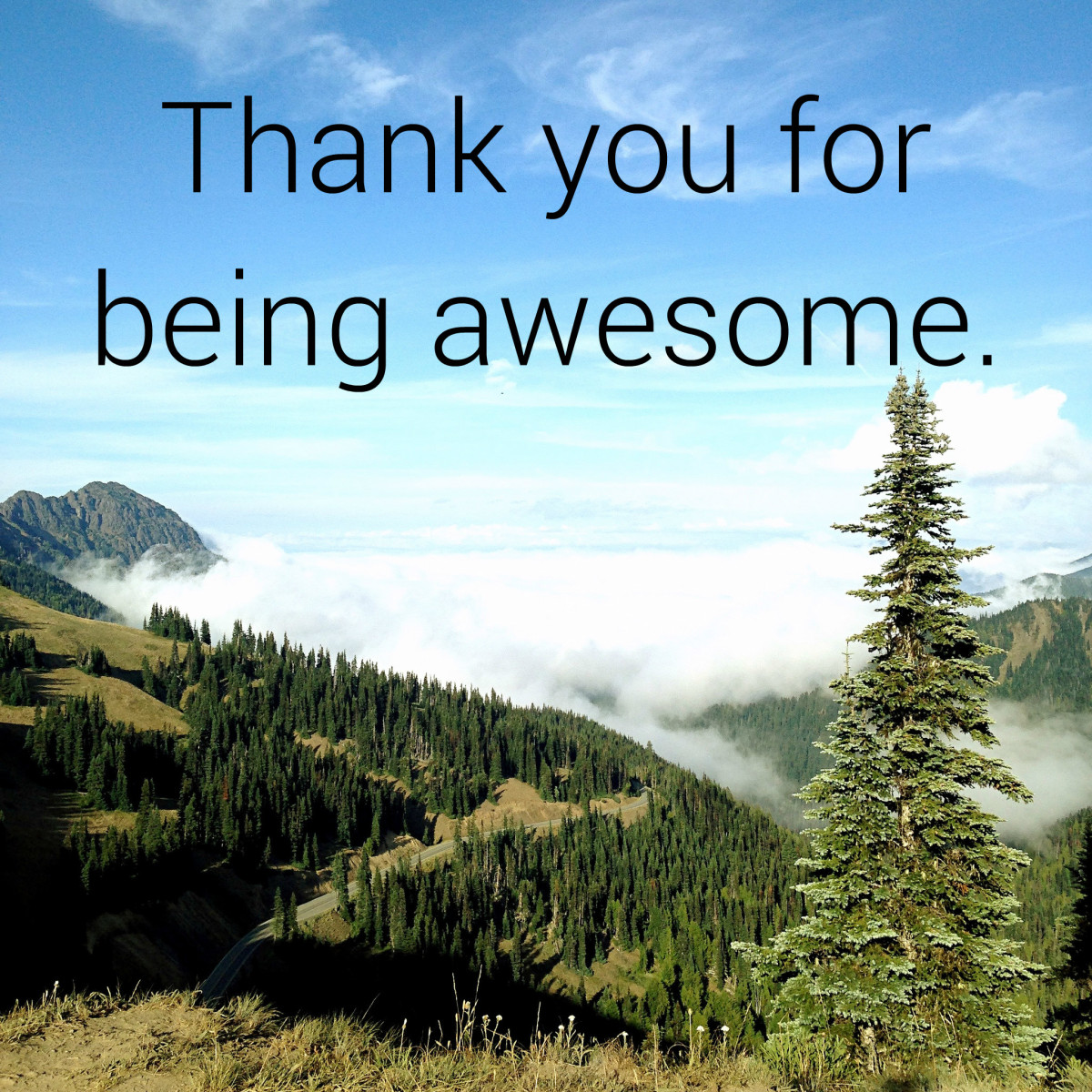 Send this picture to a friend to thank them for being so great.