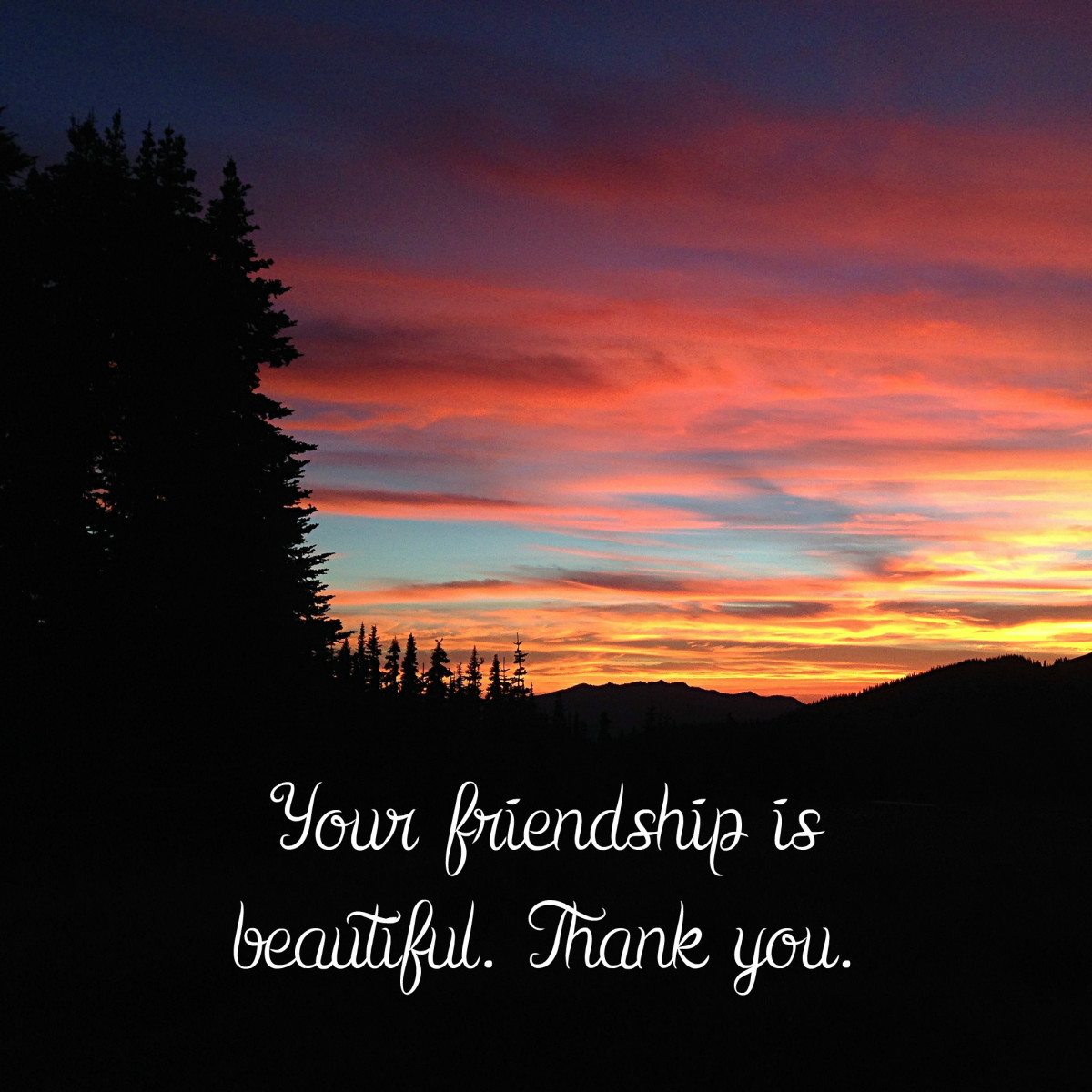 This is a great friendship card that shows how much you love your friend.
