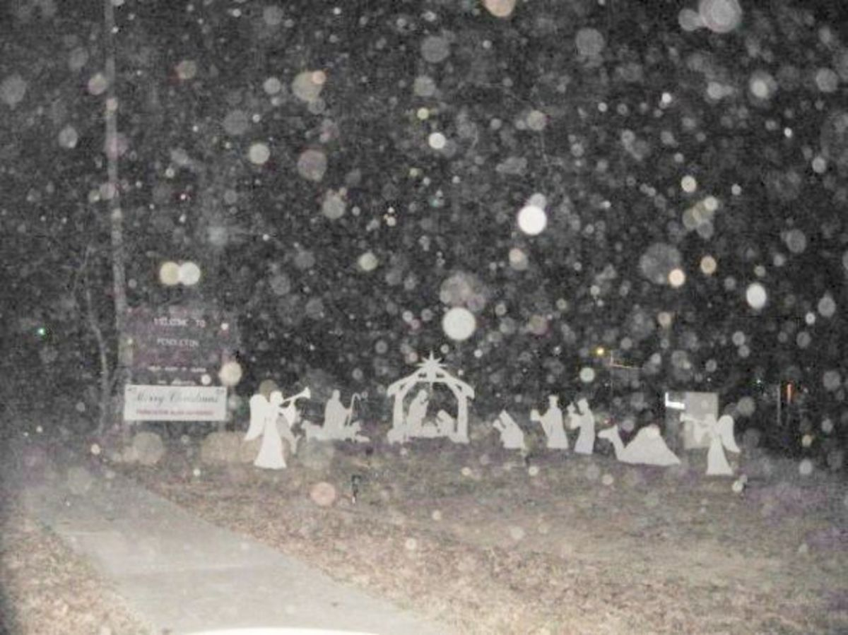 Outdoor Nativity Scene in Pendleton SC