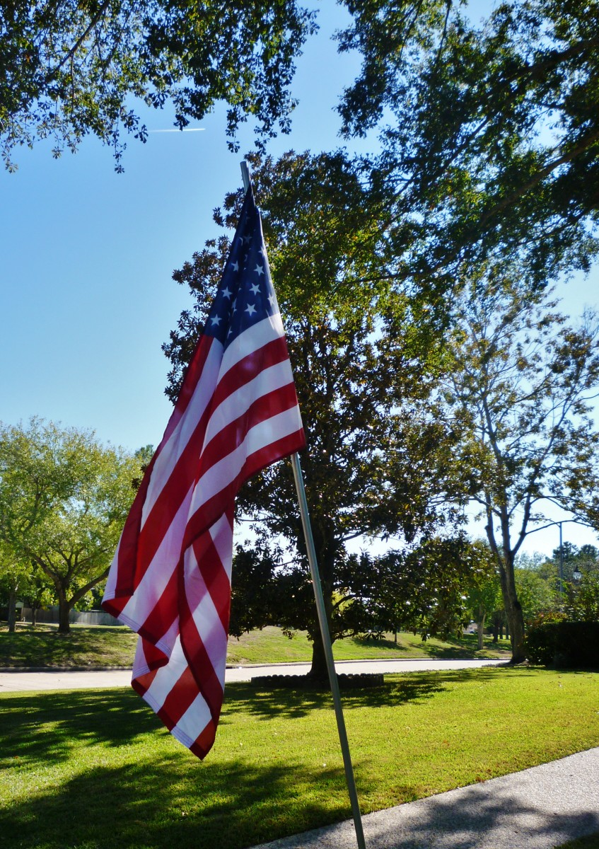 U.S. flags on poles in front yards