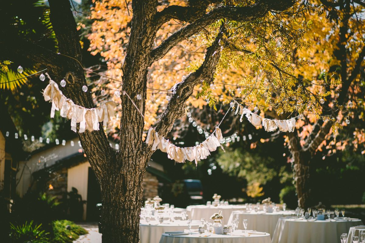 If you're on a budget, you can easily get married at a local park, or even in the woods!