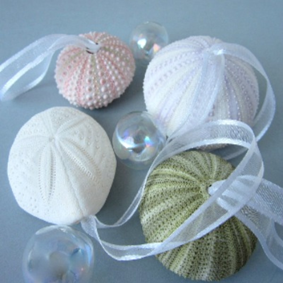 http://www.etsy.com/listing/162163734/beach-decor-sea-urchin-christmas?ref=shop_home_active