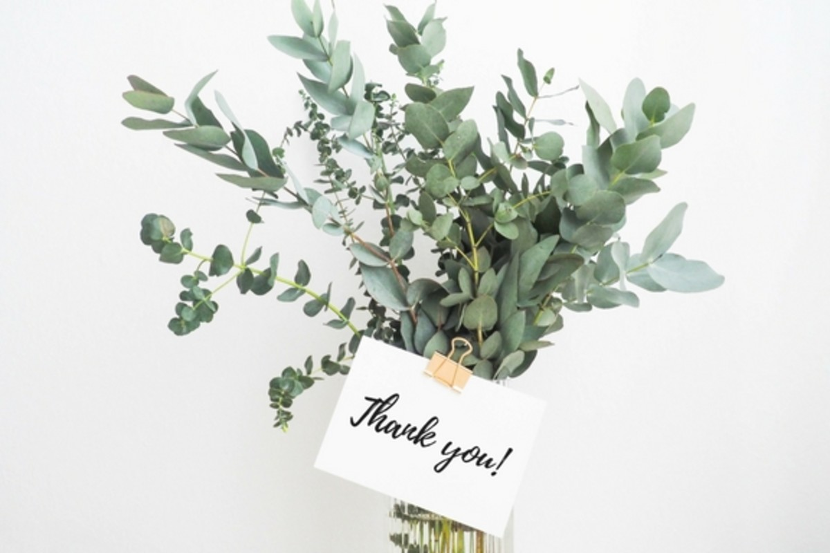 thank you note graduation