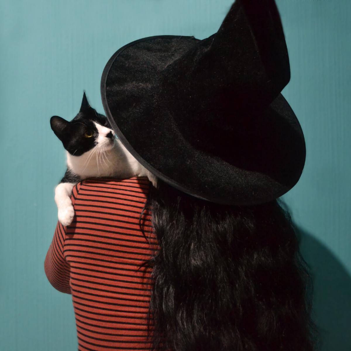 Costumes like this witch's hat are perfect for work because they can be easily removed if necessary. If your workplace is pet-friendly, bring in your cat to complete the look!