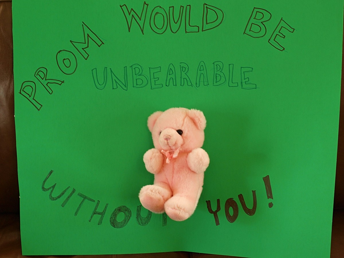 Stuffed animals are a great way to ask someone to the prom.