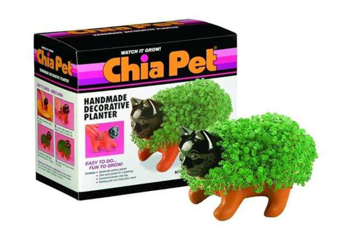 Chia Pets come in a wide variety of shapes, such as this cat.