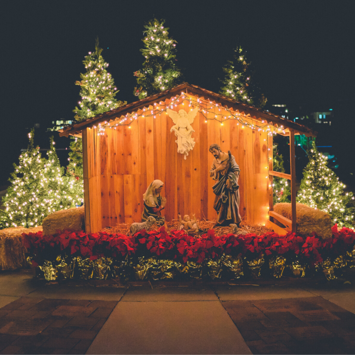 Most churches host special Christmas presentations and events during December.