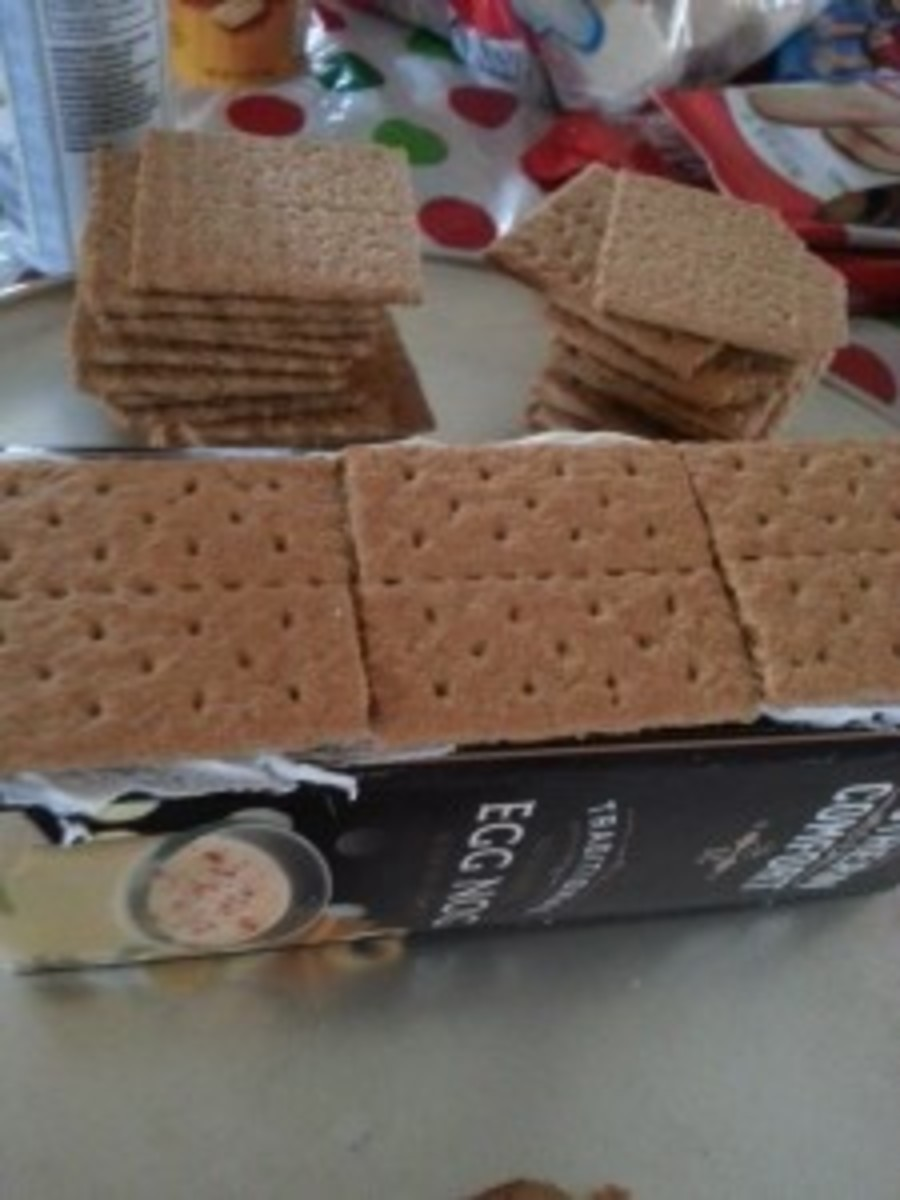 Add half graham crackers to the top and sides of the iced carton.