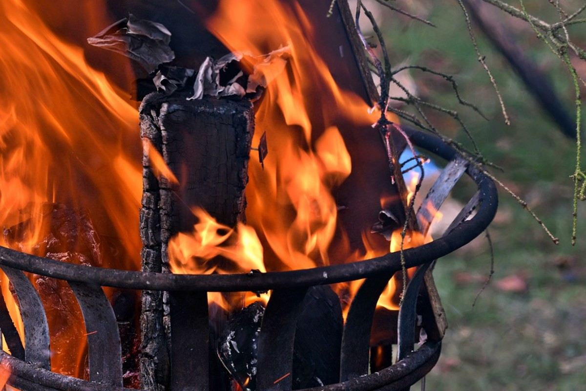 Use your tree as firewood in your firepit.
