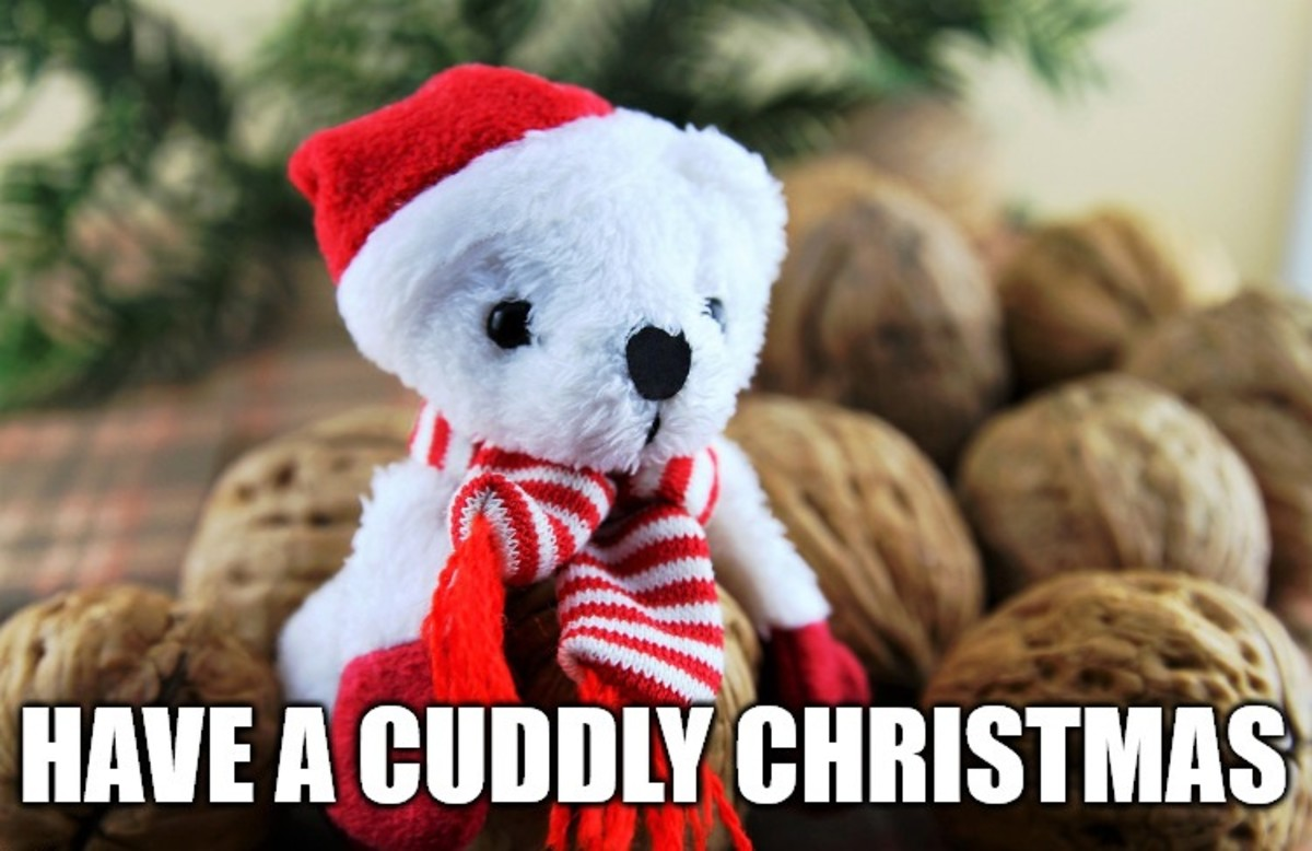Have a cuddly Christmas!