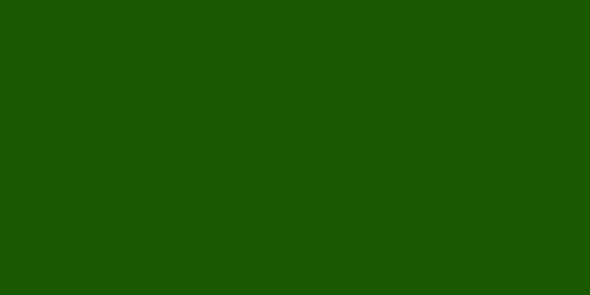 LINCOLN GREEN 10% (R) : 55% (G) : 0% (B)