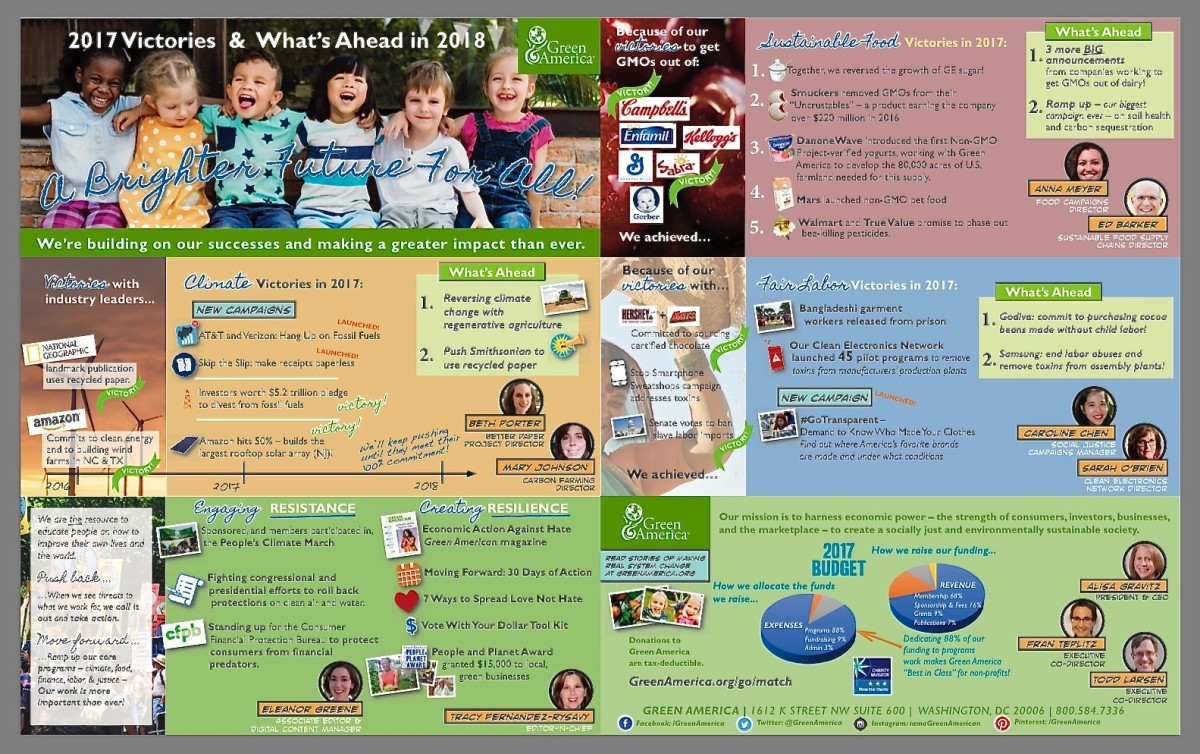 Green America's infographic report on successes of 2017 and expectations for the coming year. (Click on the source link to enlarge the infographic.)