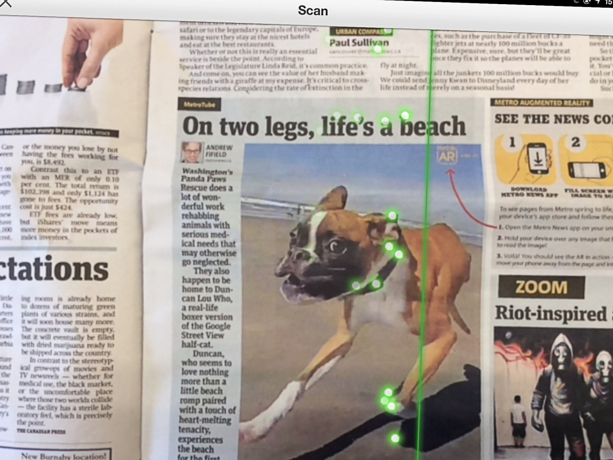 Markers have been placed on the photo of Duncan the two-legged boxer.