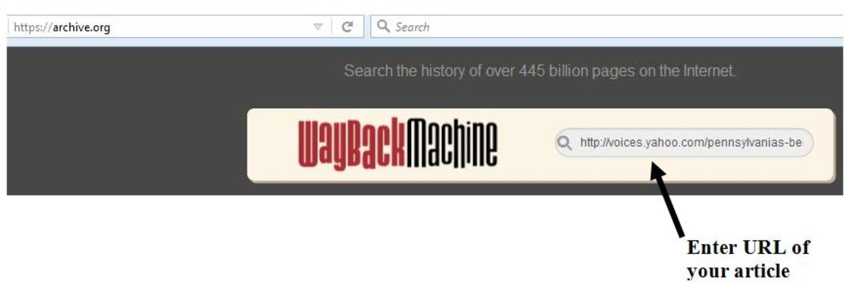 Entering your URL into the Wayback Machine