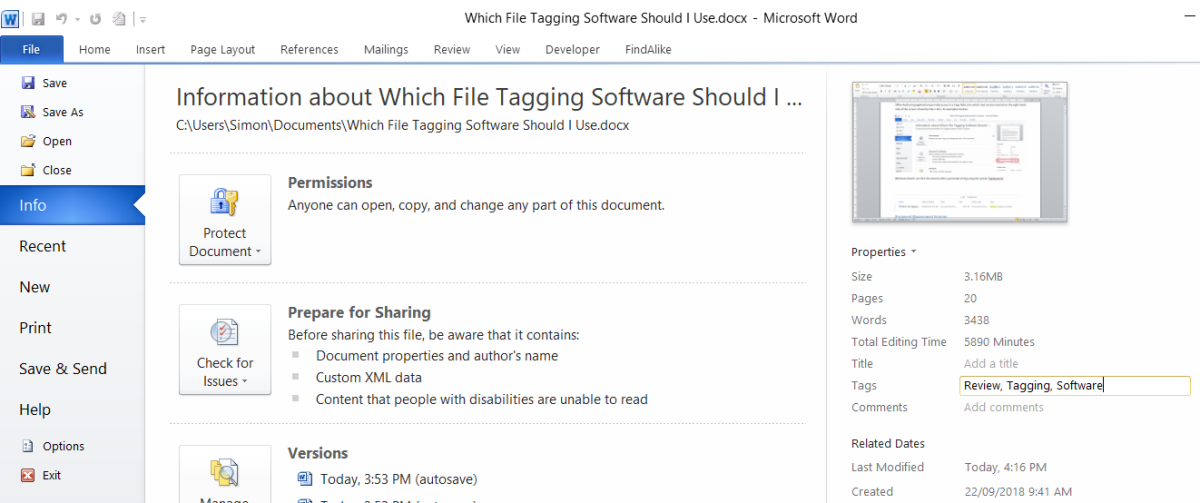 Word File Information tab showing tag entry field
