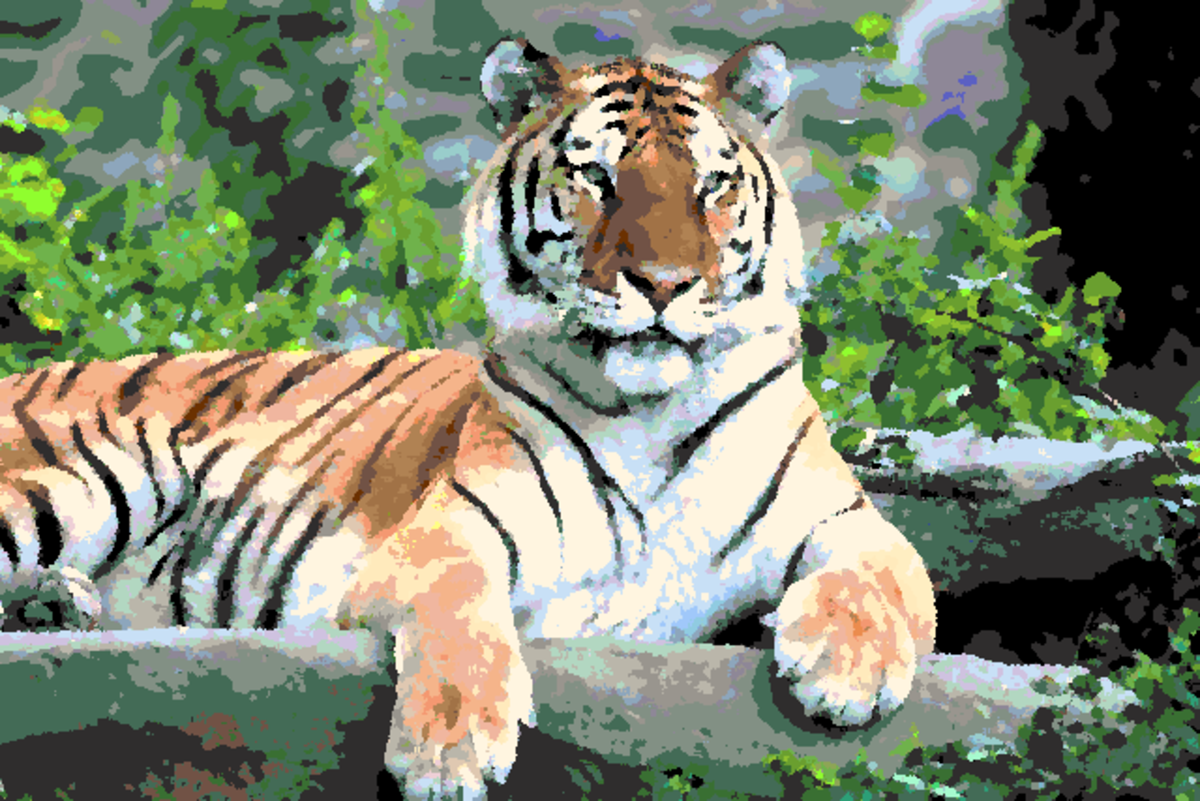 Tiger photo with an oil paint effect and marker colors.