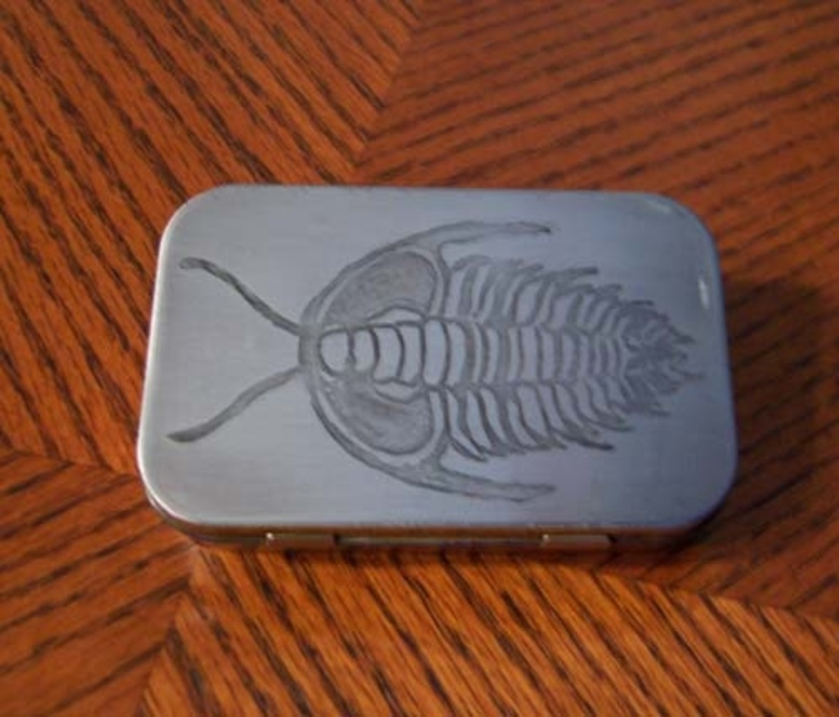 Trilobite etched into an Altoids tin, photo by Kylyssa Shay