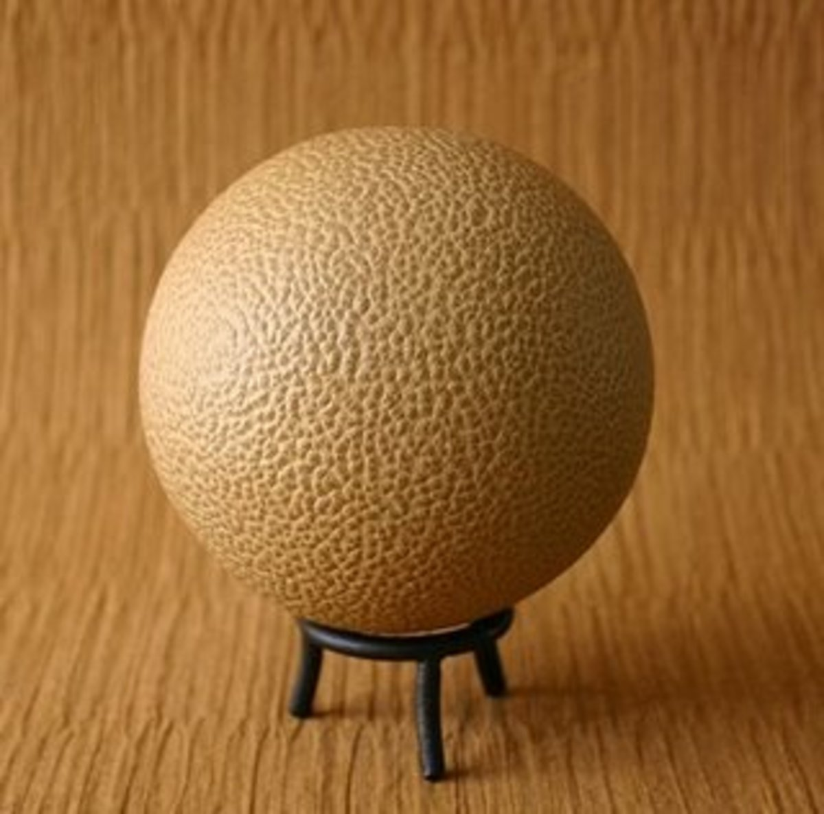 This mud ball dried with an outer texture.