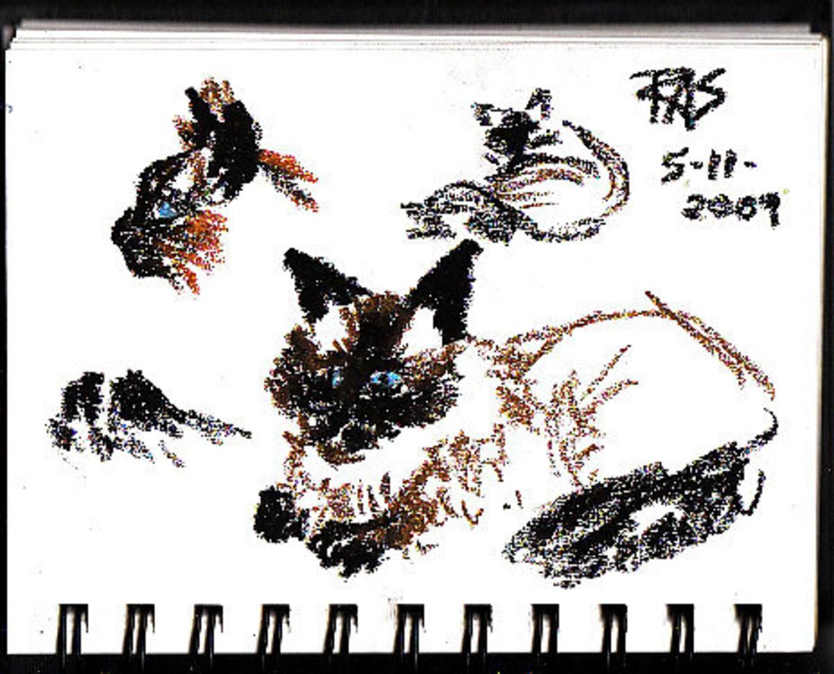 Cat gesture drawings by Robert A. Sloan
