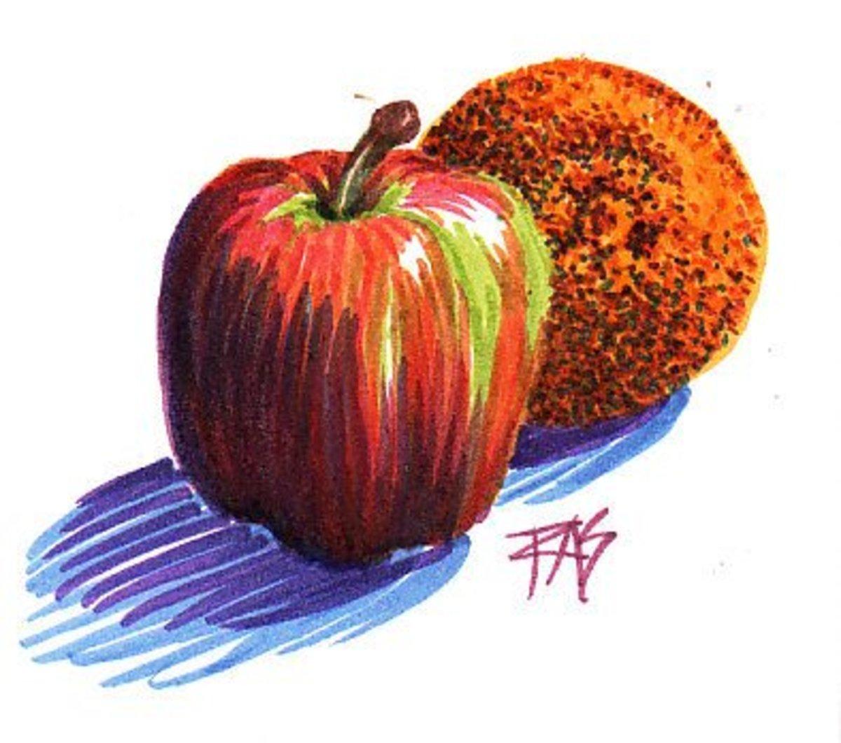 Apple and Orange, Pitt Artist Pens in white wirebound ProArt sketchbook by Robert A. Sloan