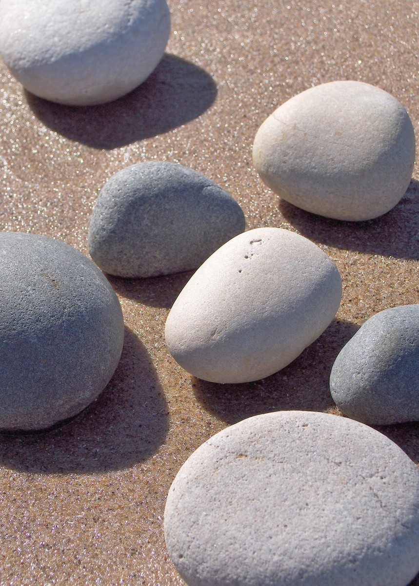 I love the soft appearance of sand smoothed stones! These stood out having been dried by the wind lying over wet sand.