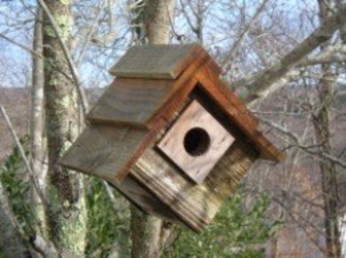 Hanging Birdhouse Made From Scrap Wood