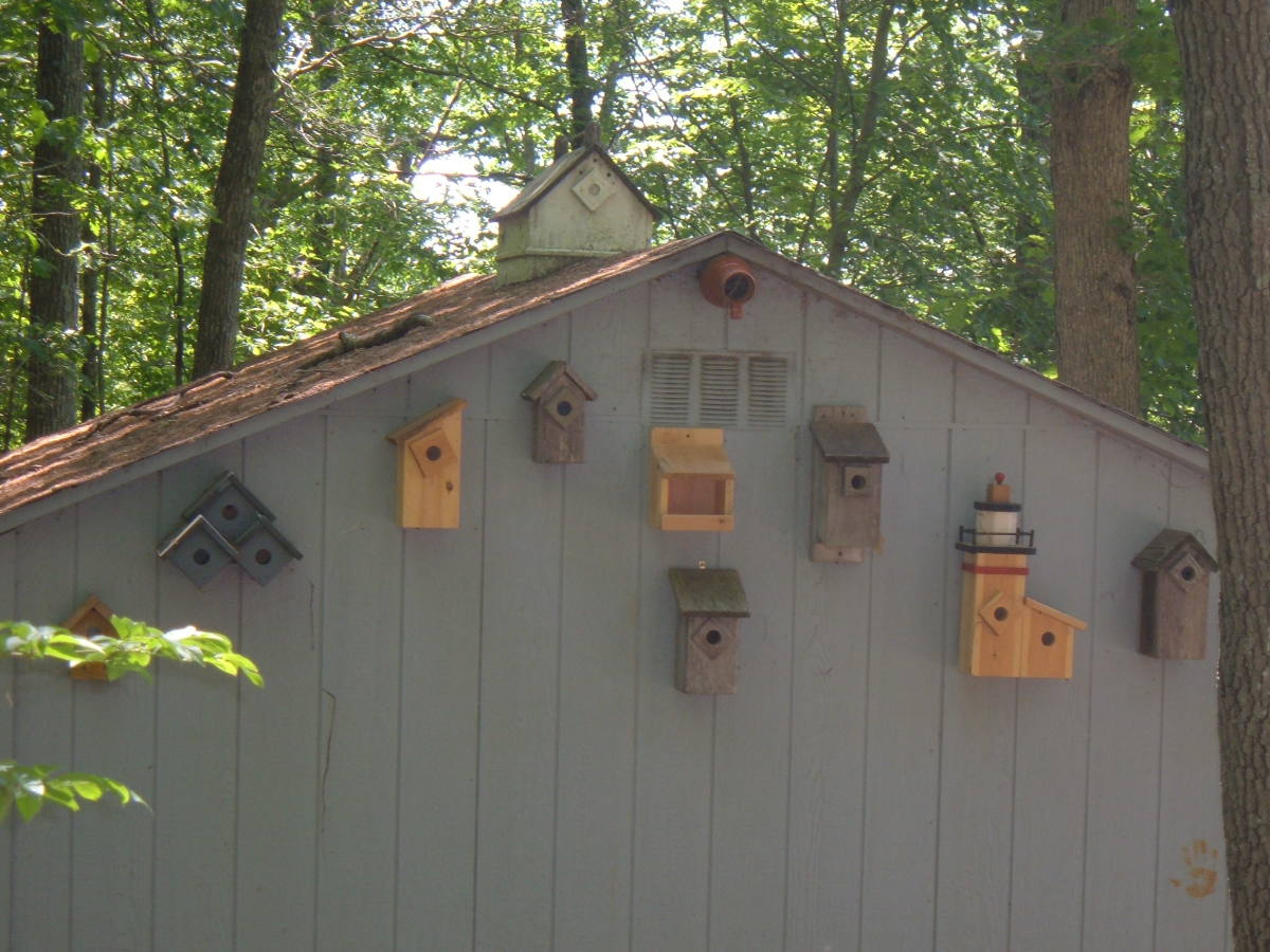 Some of my birdhouse designs