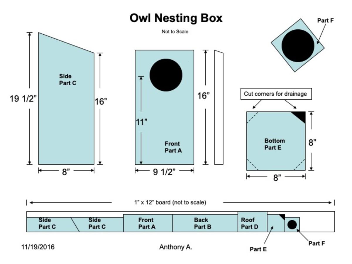 Screech Owl Nest Box Plans