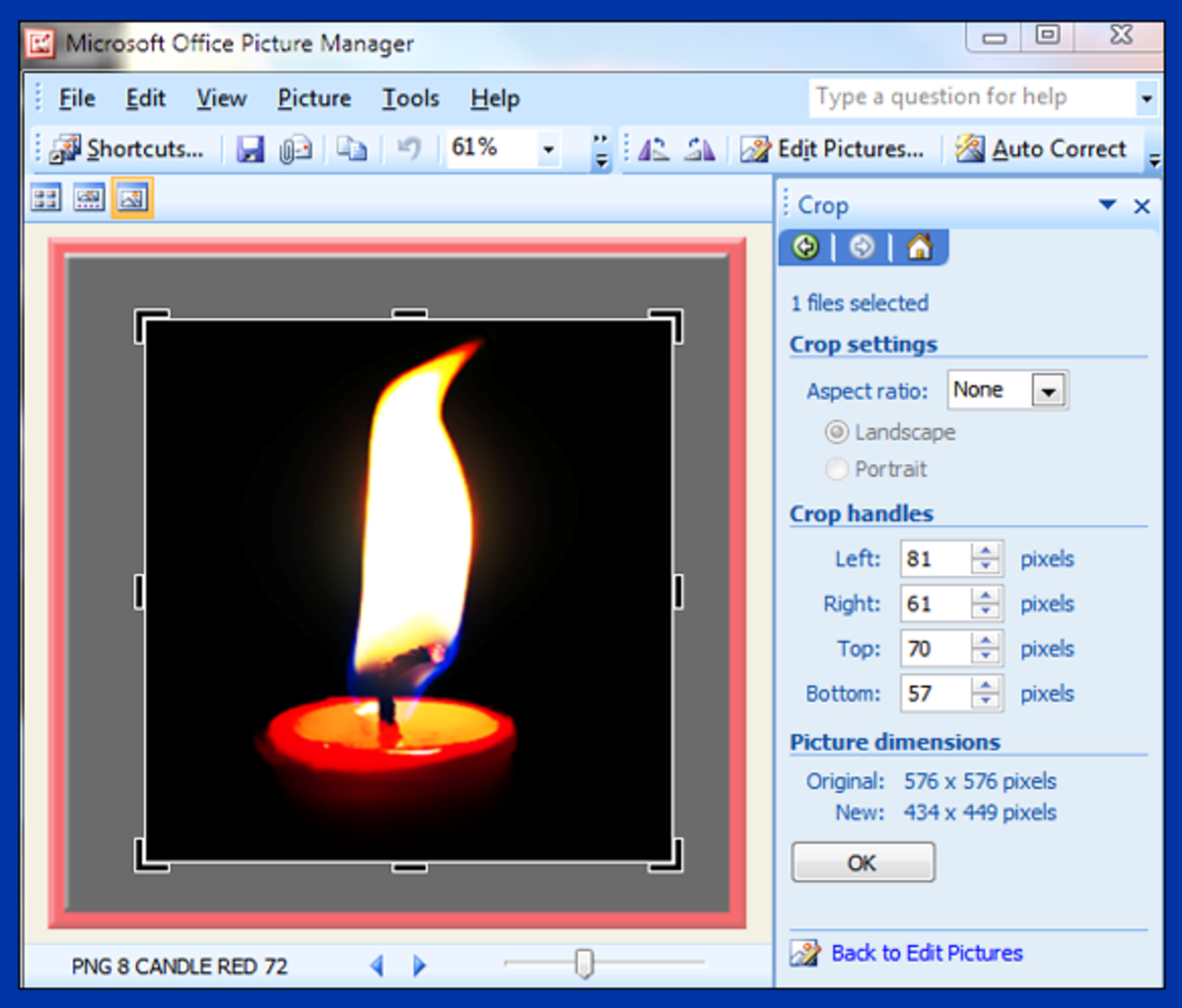 Screenshot 11. Cropping your photo in Microsoft Office Picture Manager