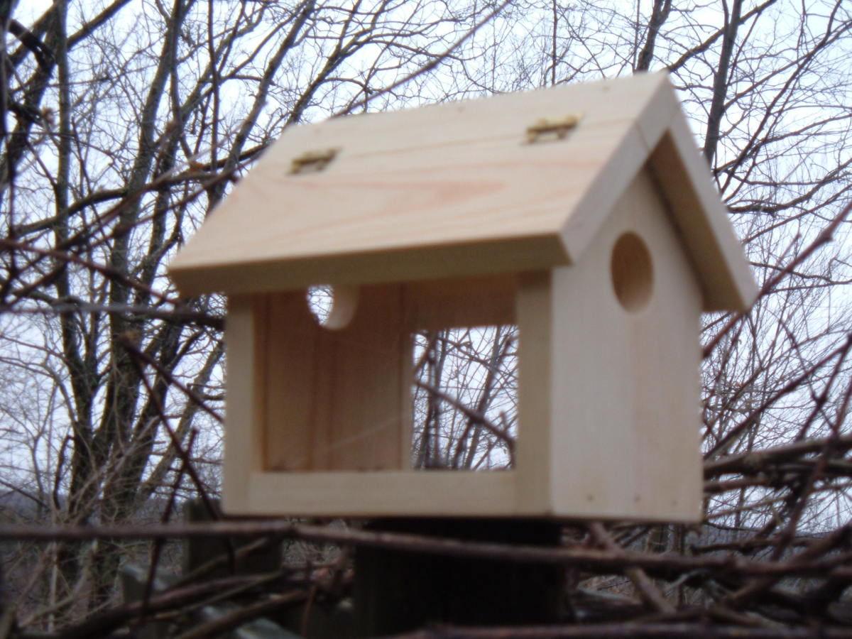 My original bluebird feeder