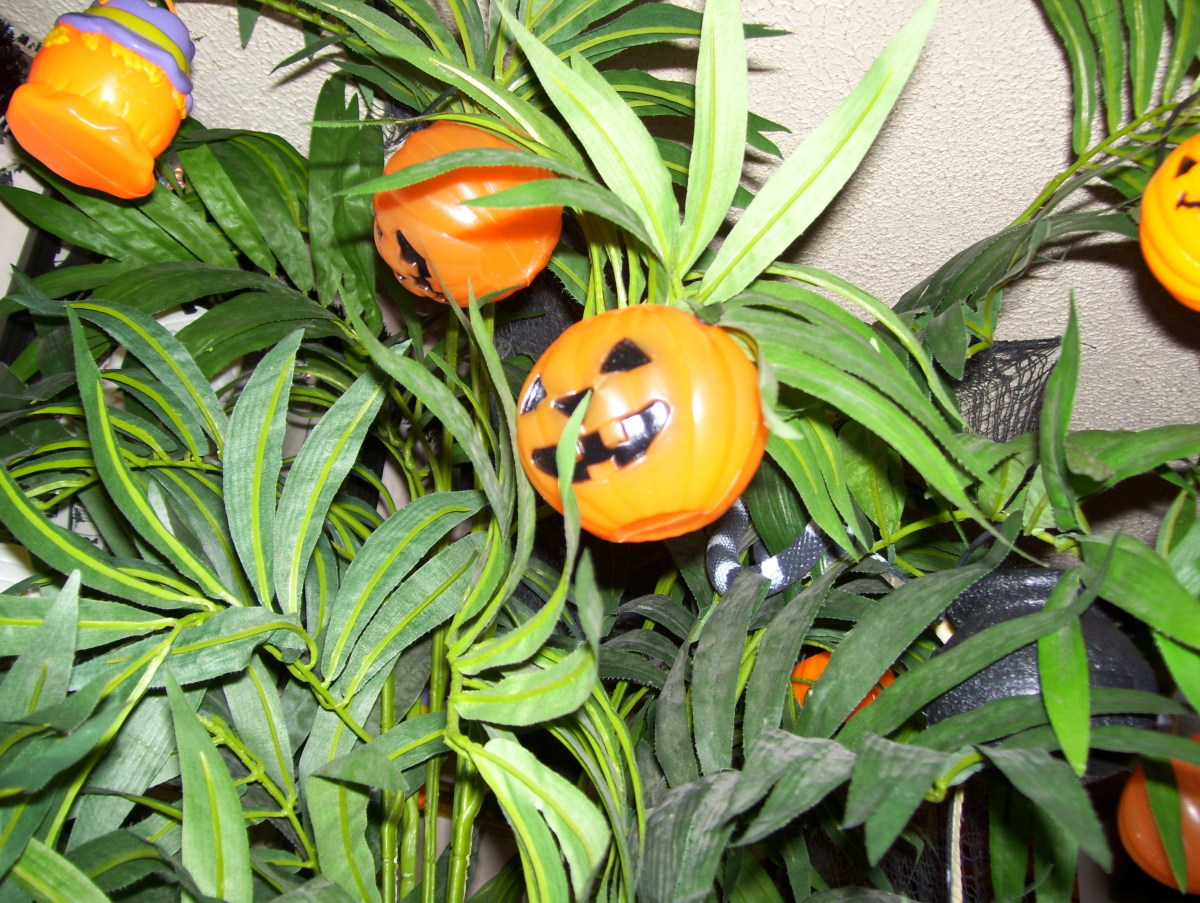 Miniature pumpkin buckets on my plants!