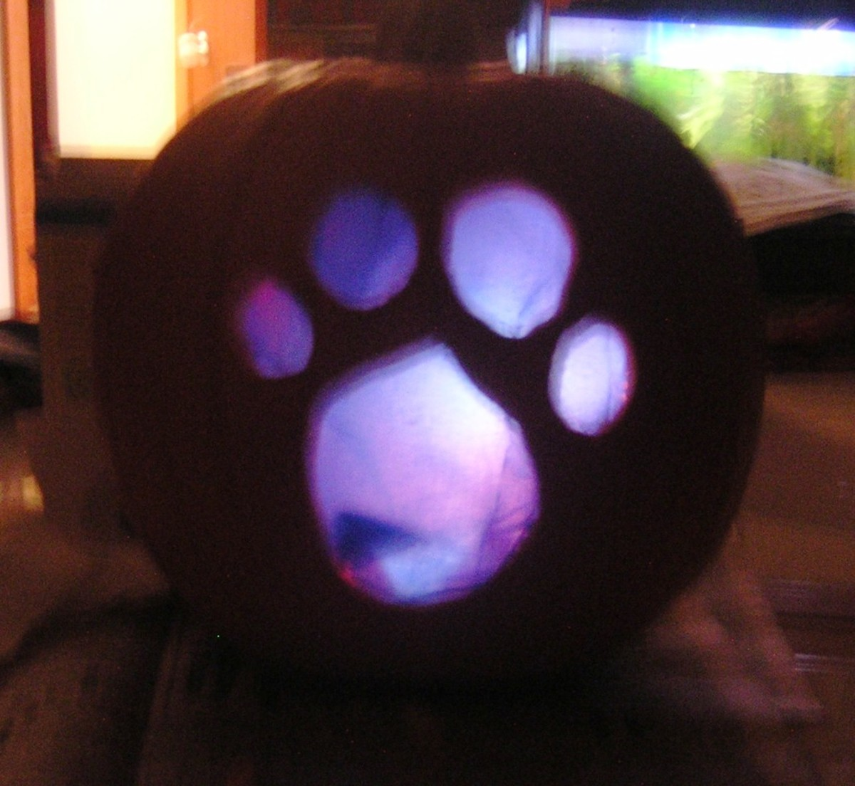 "My husband made this for my son when he was two.  The ""blue"" pawprint from Blue's Clues was made by gently attaching blue tissue paper with toothpicks on the inside of the pumpkin after it had been cut out."