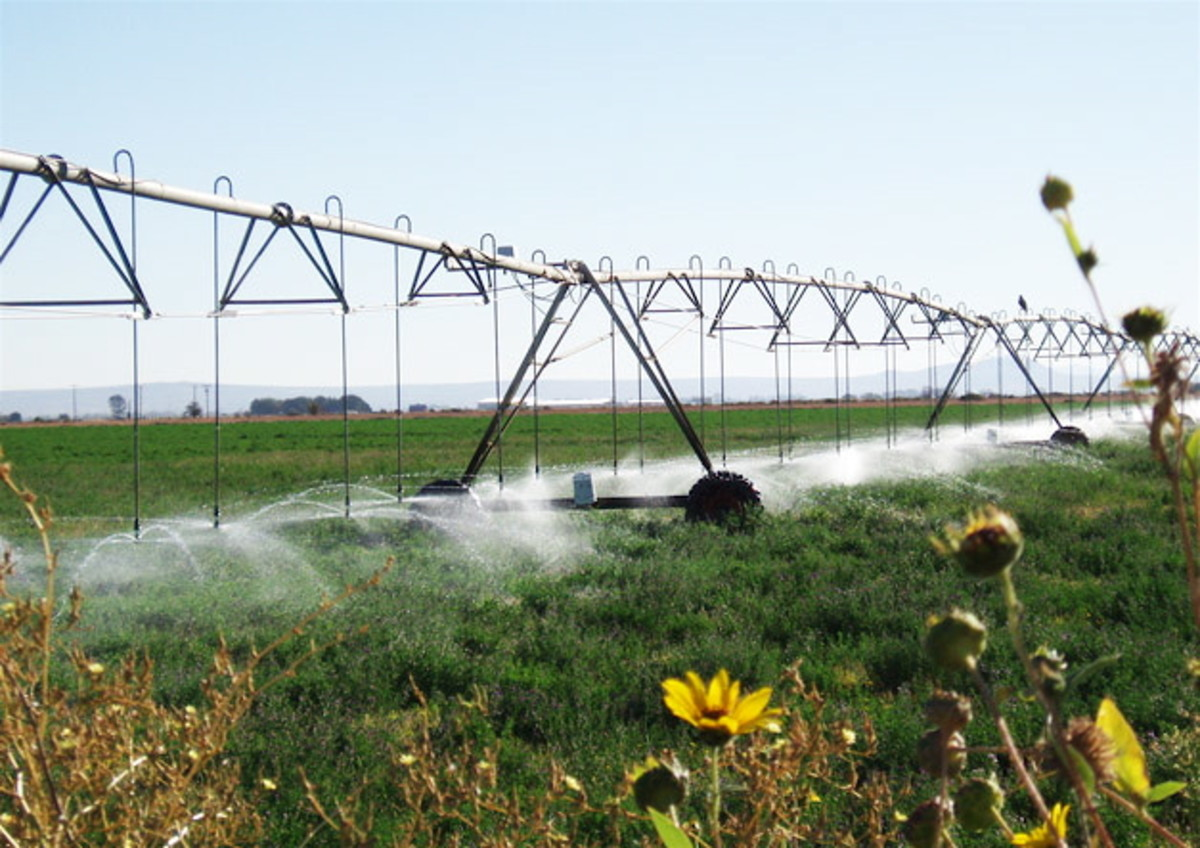 Modern agricultural irrigation systems are often controlled by soil moisture sensors sending messages to a central computer.