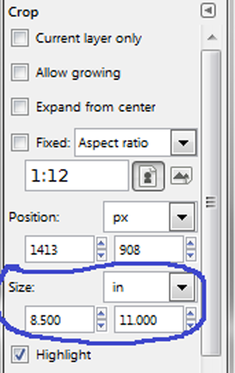 Type in the measurements you want for your finished photo.