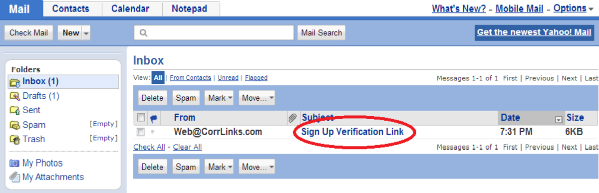 Step 6: Verification email