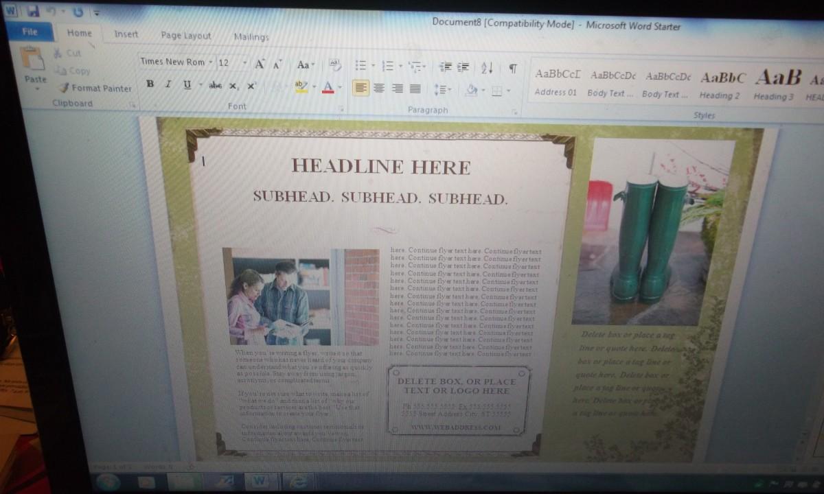 Screen showing preformatted Microsoft design
