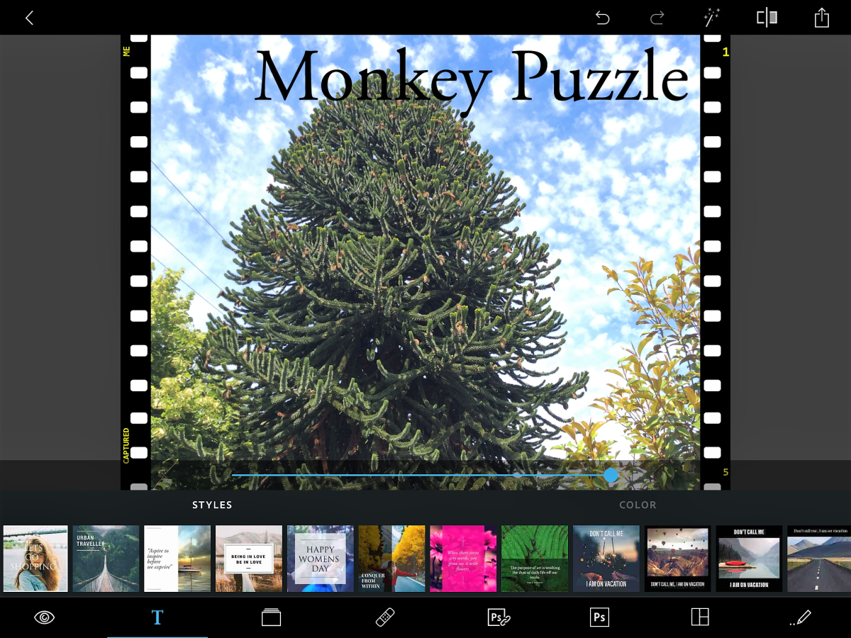 The Photoshop Express app is running on iOS 9. I've added a frame and text to my photo of a monkey puzzle tree as well as filters on the photo itself.