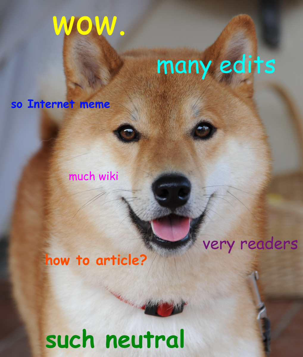 Doge is a very popular meme.  It even spawned a digital currency by the name of Dogecoin.