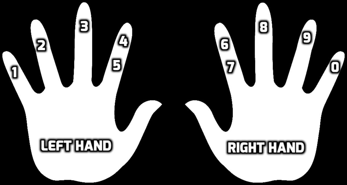 The number-finger association.