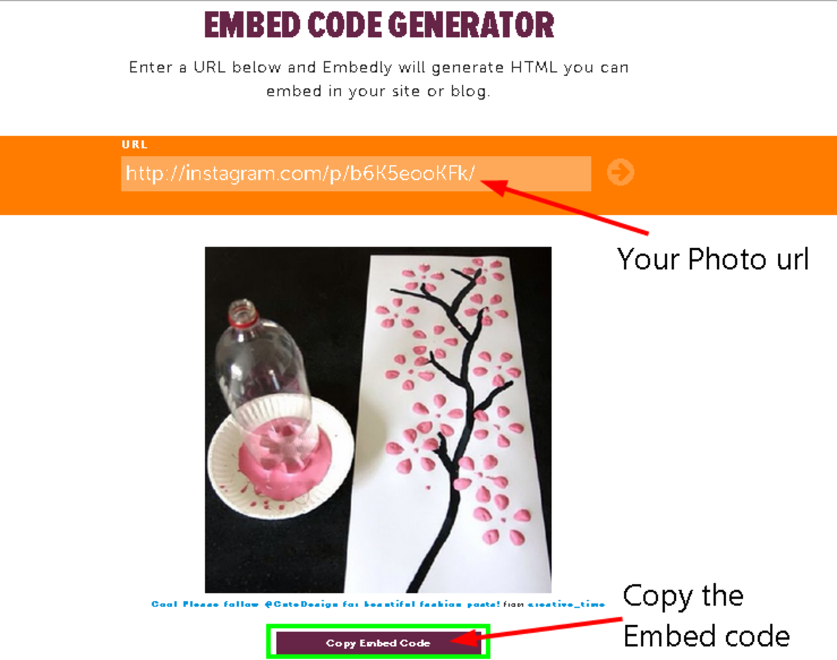Copy the generated rich snippet embed code for your Instagram photo or video