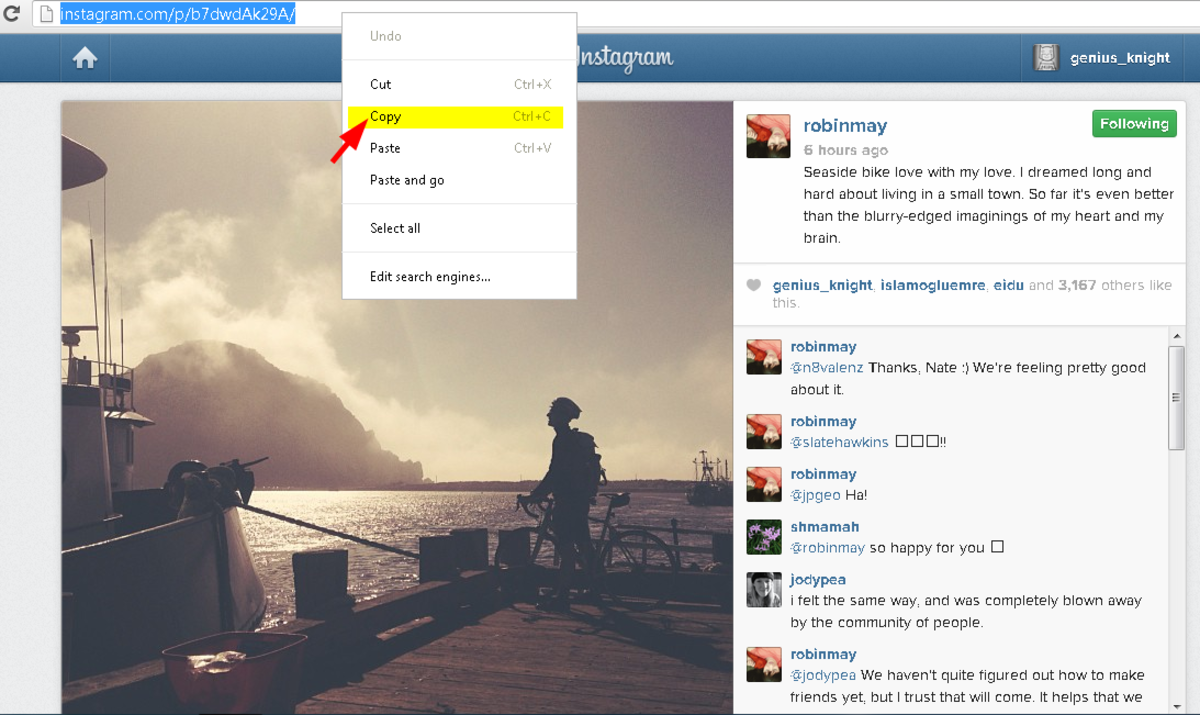 Copy the Instagram video or photo url