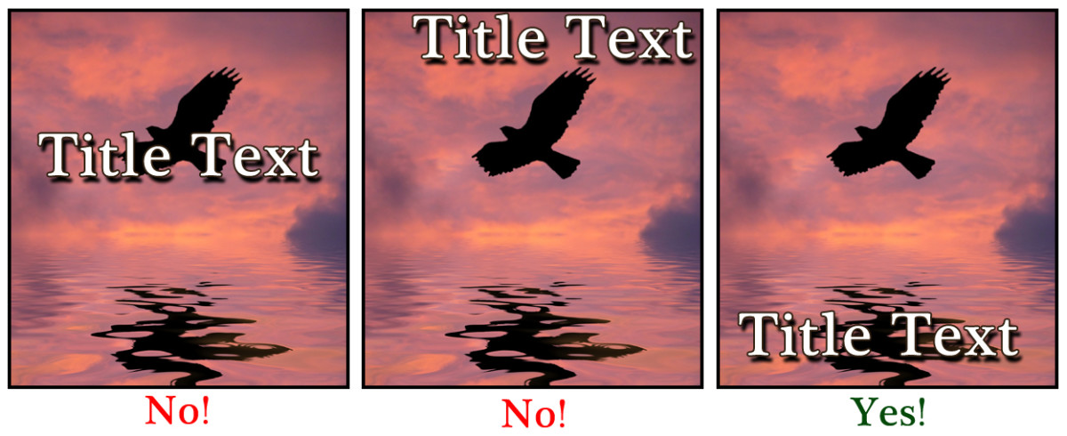 In this image, I wanted the bird to be what attracted the eye. In my opinion, the bottom center is the best place for the text because it doesn't detract from the image or look oddly placed.
