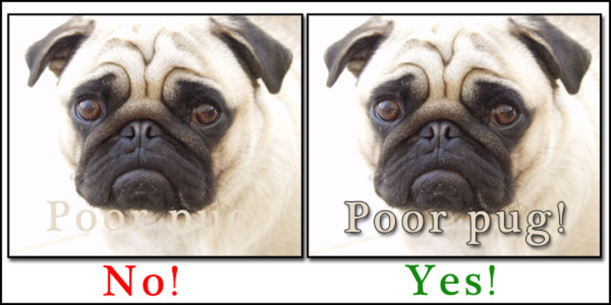 "Poor pug! I bet you almost didn't even notice there was text in the first example! See what a couple of  layer styles can do? This is just ""drop shadow"" and ""stroke."""