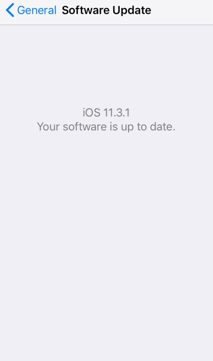 This screen will show up if you have the most up to date version of iOS.