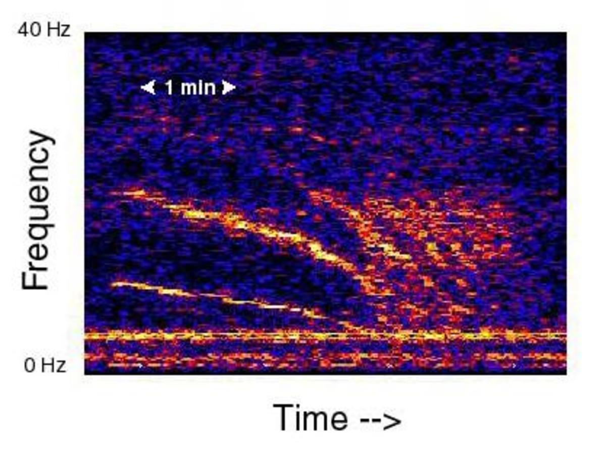 A spectrogram of the 'Slow Down' recording.