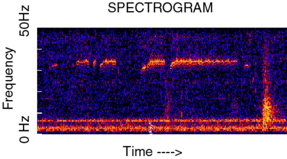 A spectrogram of audio resembling a train moving under the Ross Sea.